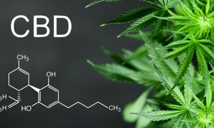 Three Things To Consider Before Buying CBD Products!